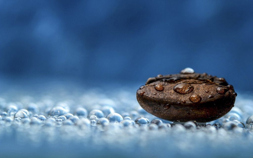 coffee beans water drops blue macro photography
