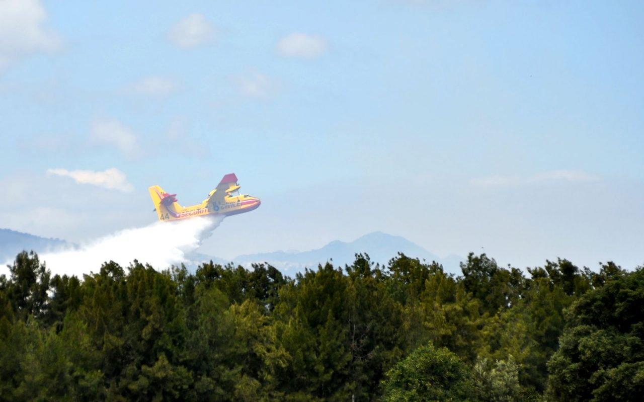 planes forests firefighting aircraft